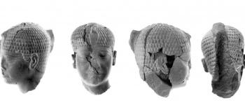 La escultura de piedra fue hallada en Israel, y los arqueólogos aseguran que corresponde a un hecho descrito en el libro bíblico de Josué.